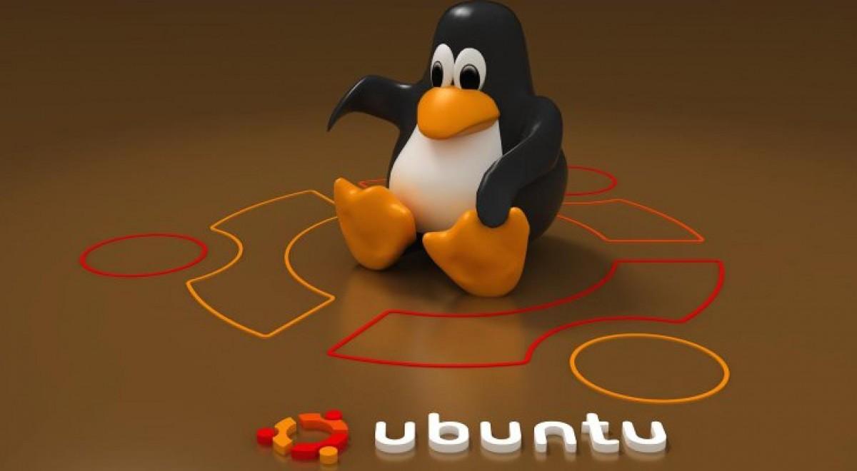 Linux Compatibility Review 2017 - Projekt Neptun